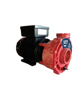 Aqua-Flo XP2 2.0hp 2speed Spa Booster Pump