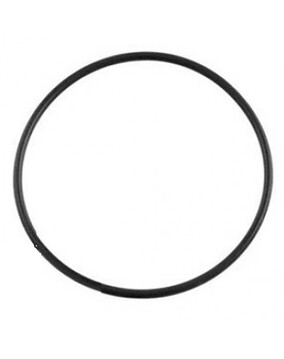 Poolrite Enduro Pool Pump & V600 Top Valve O'Ring / Gasket - Genuine