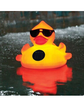 SwimSportz Solar Light Up Duck: Floating Pool Light (large)