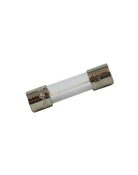 Zodiac LM2 Fuse W110161 - Chlorinator Spare Part