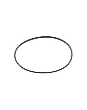 Zodiac LM3 O Ring W150181 - Chlorinator Spare Part