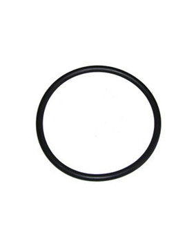 Zodiac Ei Main O Ring W151281 - Chlorinator Spare Part